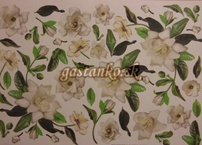 Gardenia Cream