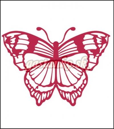 Motýľ DOUBLE