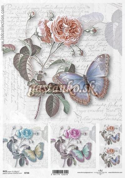 Motýľ na ruži