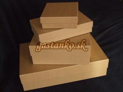 Kartónová krabička 25x40x10