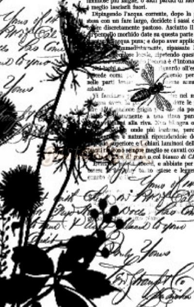 Pečiatka HD Rastlinky a písmo