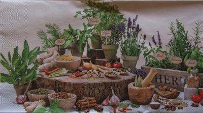 Výstava byliniek a korenín