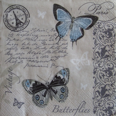 Vintage písmo a motýle
