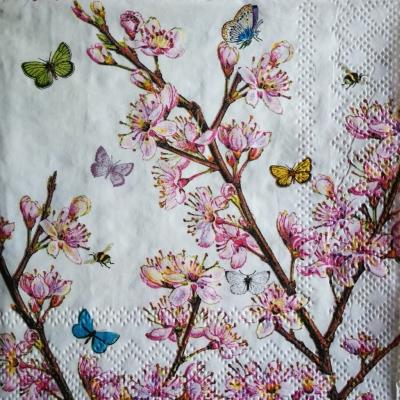 Kvitnúca broskyňa v bielom