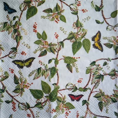 Raj motýlikov