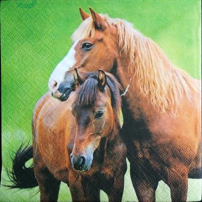 Dva kone