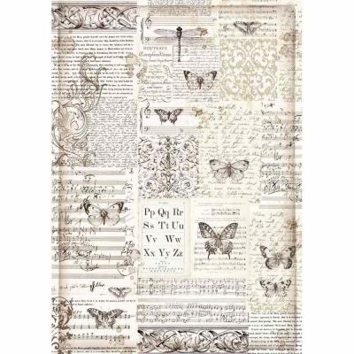 Motýle a texty