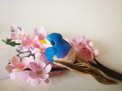 Vtáčik modrý