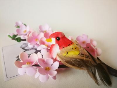 Vtáčik červený