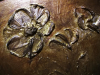 Lazúrový gél zelený so zlatými trblietkami