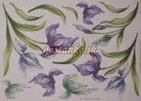 Soft papier MA 35x50
