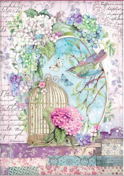 Hortenzia - vtáčik a klietka