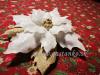 Kreatívny set Vianočná ruža 15cm