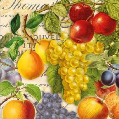 Ovocný festival