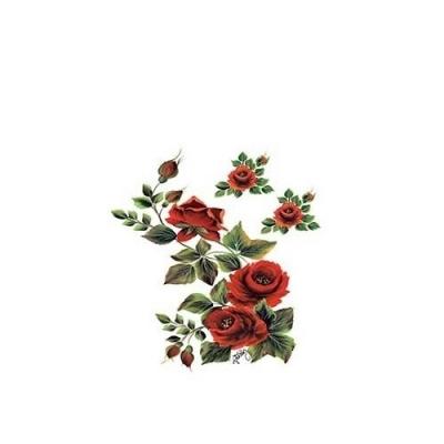 Transfer Sýtočervené ruže