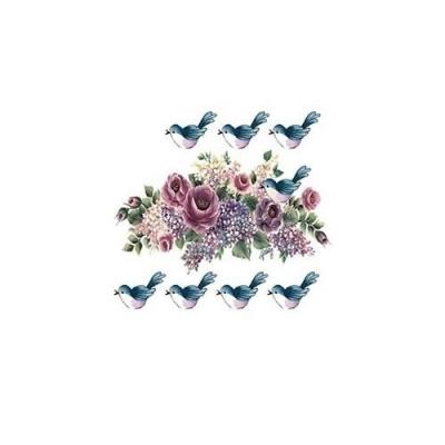 Transfer Ruže a vtáčiky